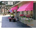 Hutcheon's Flowers (our shop)