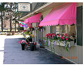 Hutcheon's Flowers